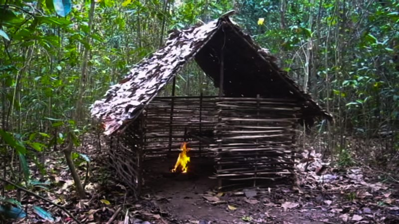 2_Primitive-Shelter-in-the-woods-