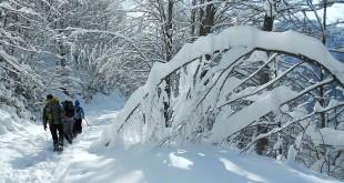 kar yürüyüşü