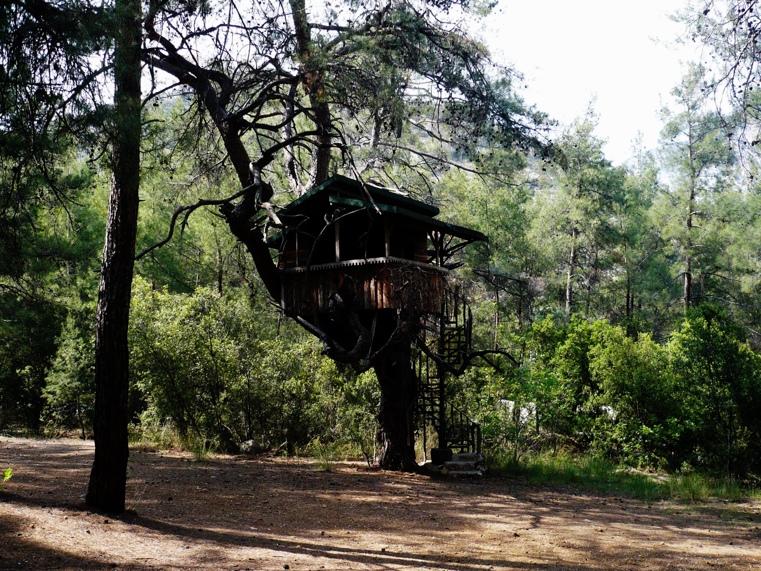 Güllük Dağı (Termessos) Milli Parkı