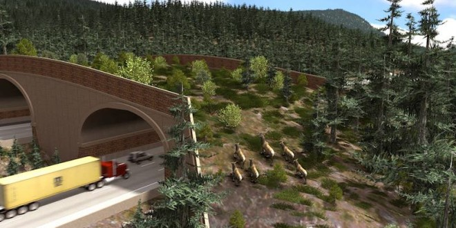A rendition of the Price Creek crossing site.
