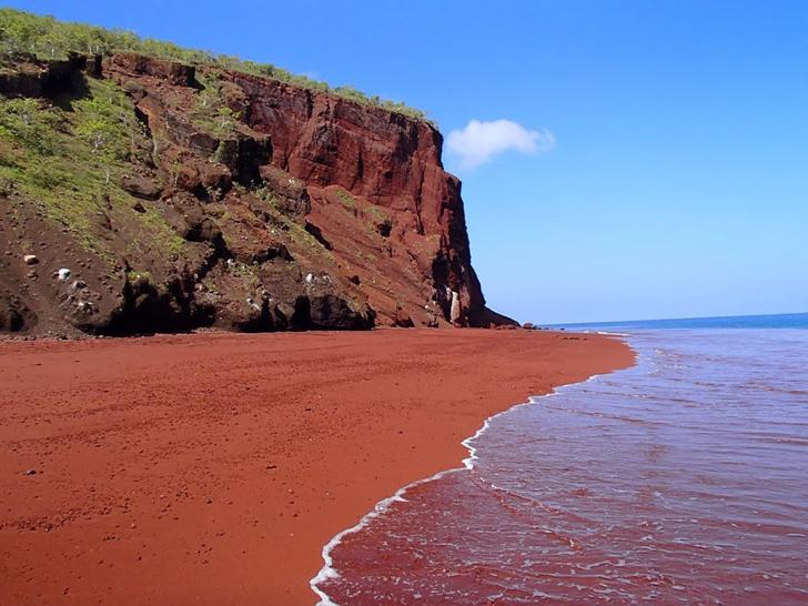 kırmızı kum sahili rabida galapagos