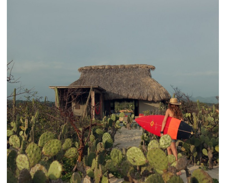 meksika kulübe doğa kaktüs