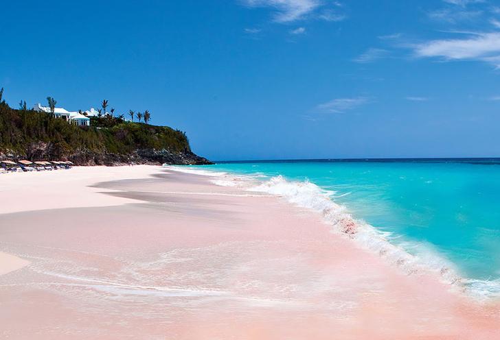 pembe sahiller bahamalar