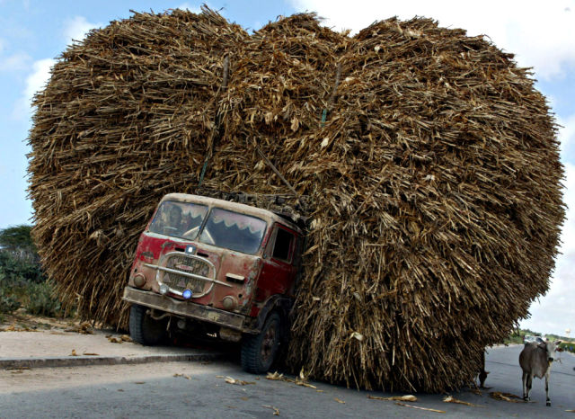 A Somali truck loaded with corn is parked on side of a road in Mogadishu, September 24, 2003. The dilapidated city is the capital of the failed Horn of Africa state, where motorists have the choice of driving on the right or the left hand side of the road, such is Mogadishu's anarchy. Car wrecks, goats, cattle and the tent-like homes of refugees line the pot-holed, sandy streets. REUTERS/Antony Njuguna Pictures of the month September 2003 HIGH RESOLUTION FILE AN/SN - RTR3KN7