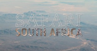 safari_güney_afrika
