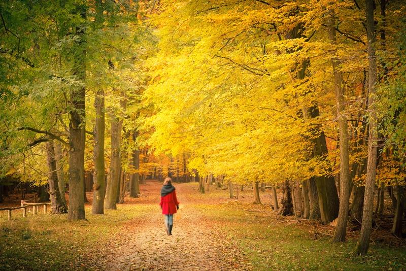yürümek_doğa